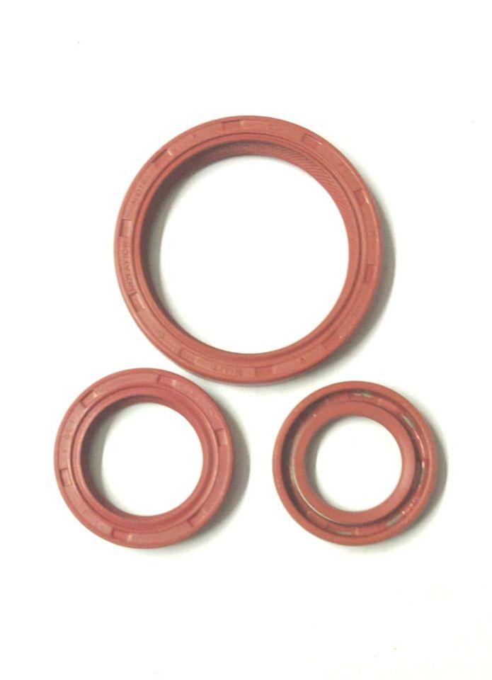 Engine Oil Seal For Hyundai Santro Petrol (Set Of 3Pcs)