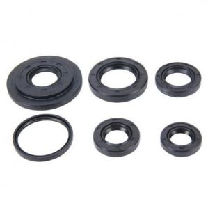 Engine Oil Seal For Hyundai Accent Crdi Diesel