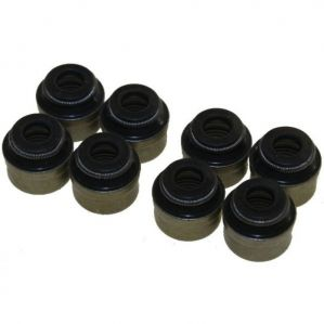 Engine Valve Seal For Hyundai Accent Petrol Set Of 12Pcs