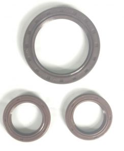 Engine Oil Seal For Chevrolet Beat Petrol